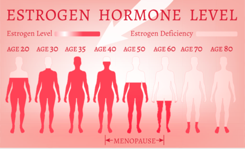 Muffin tops, Heavy Period, Depression, etc. Estrogen or Progesterone to Blame?